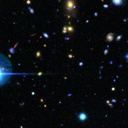 Subject ASW0008n9y