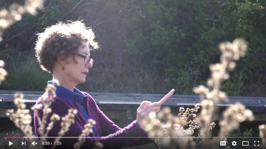 Video still: A talk with author Mary Ellen Hannibal about citizen science and iNaturalist