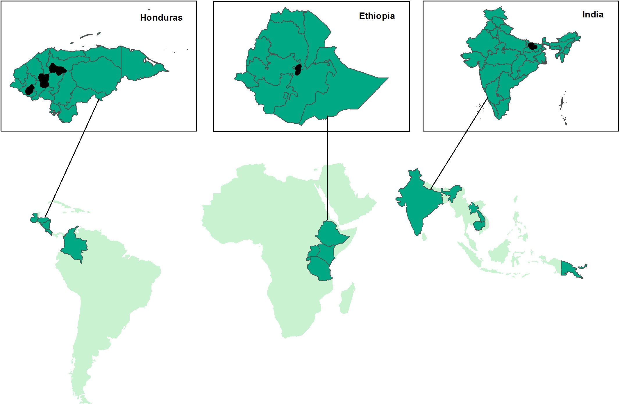 Map of locations of study participants in Honduras, Ethiopia, and India.